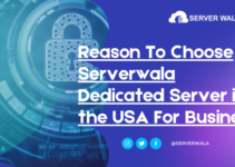 Reason To Choose Serverwala Dedicated Server in the USA For Business
